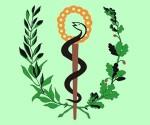 minsap-ministerio-salud-publica-cuba