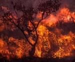 incendios-amazonia-araquem-alcantara-12-580x381