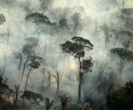 Incendio in un'area della foresta pluviale amazzonica vicino a Porto Velho, stato di Rondonia, Brasile. 20 settembre 2019. Foto: Reuters.